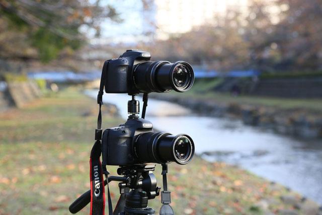 Canon EOS 7D MARKⅡ vs 70D  画質対決 【屋外/午後】